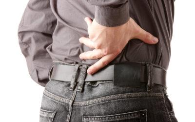A Primer on Back Pain